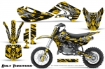 Kawasaki KLX110 2002-2009 Graphics Kit