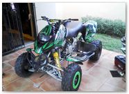 Can-Am DS CREATORX Graphics Bolt Thrower Green 2