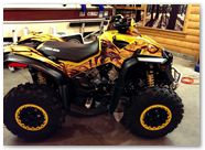 Can-Am Renegade CreatorX Graphics Dragon Fury Red Yellow 02