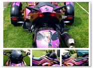 Can-Am Spyder CreatorX Graphics Kit Purrfect Purple Light