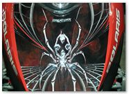 Polaris Shift CreatorX Graphics SpiderX Red 01