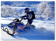 Ski-Doo Rev XP CreatorX Graphics Little Sins Blue Ice 010