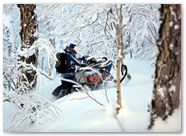 Ski-Doo Rev XP CreatorX Graphics Little Sins Blue Ice 014