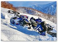 Ski-Doo Rev XP CreatorX Graphics Little Sins Blue Ice 015