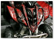 Yamaha Raptor 350 CreatorX Graphics Kit SpiderX Red 006