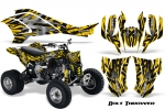 Can-Am Bombardier DS450 EFI Graphics Kit