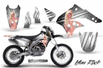 Kawasaki KLX450 2008-2013 Graphics Kit